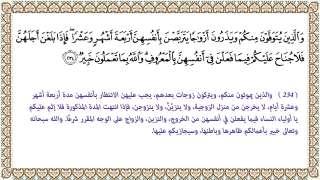 من معجزات القرآن الكريم - بصمة ماء الرجل في جسد المرأة